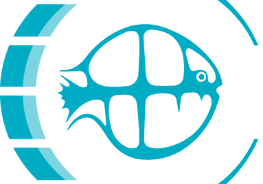 http://fsbi.org.uk/wp-content/uploads/2018/12/cropped-FBSI_logo-colour.png